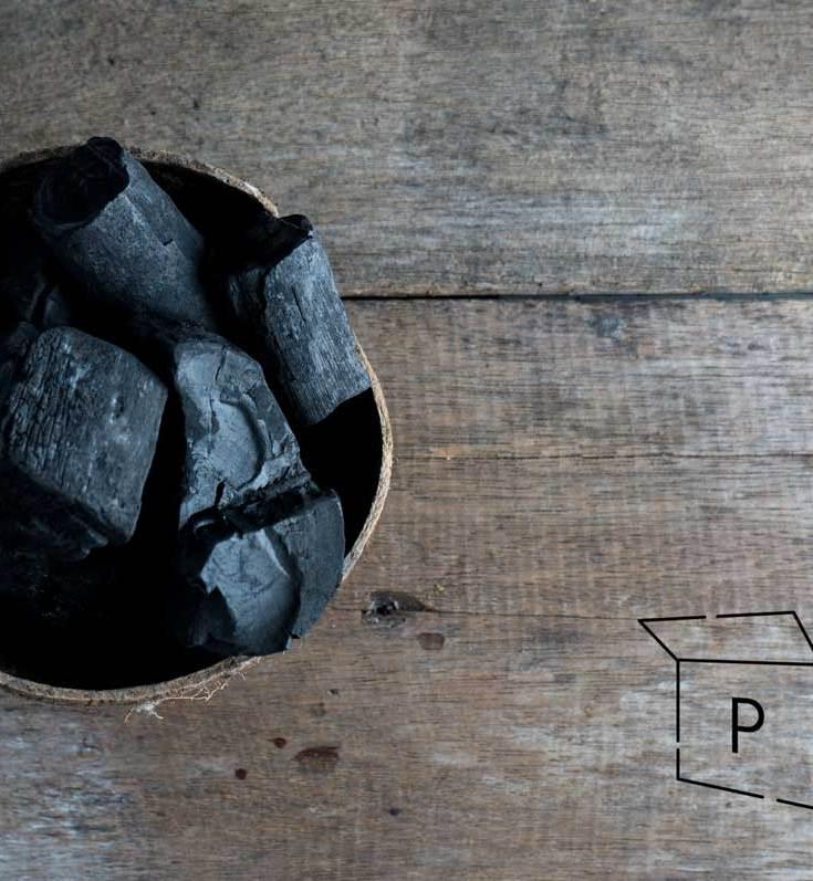 Charcoal - Pandora's Health