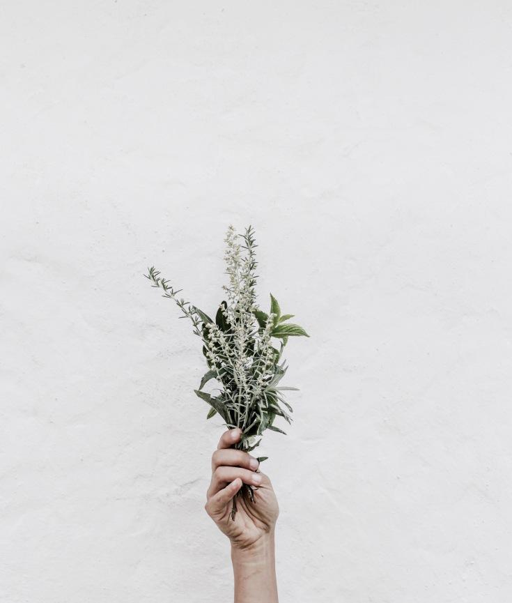 Function Medicine – Pandora's Health