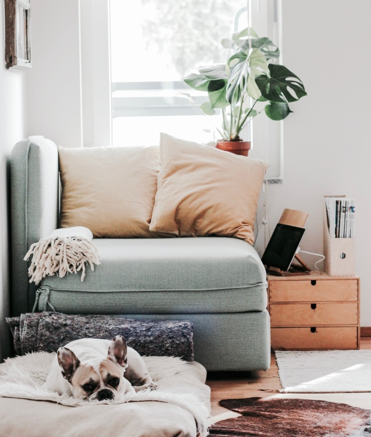 Stay home – Pandora's Health